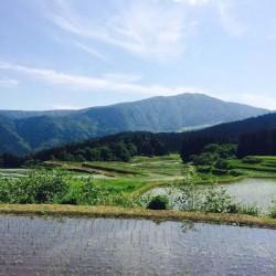 ハチ高原から行ける観光スポット① ~別宮の棚田と逆さ氷ノ山~