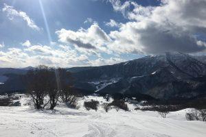 ハチ高原スキー場  1月の様子!