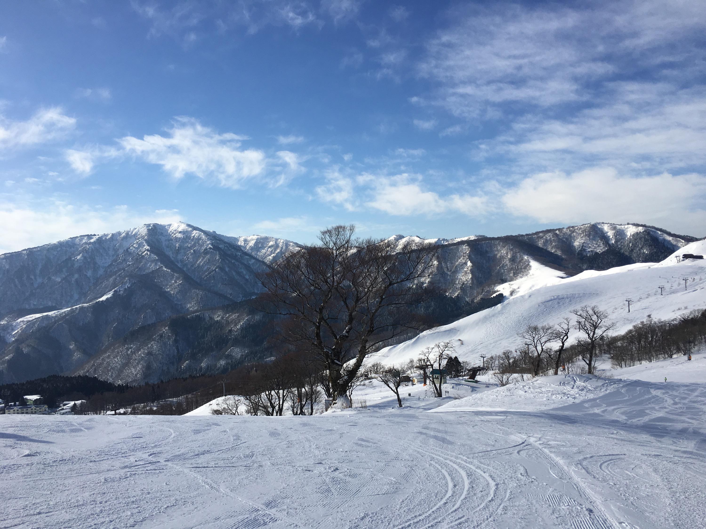 ハチ高原スキー場 1月