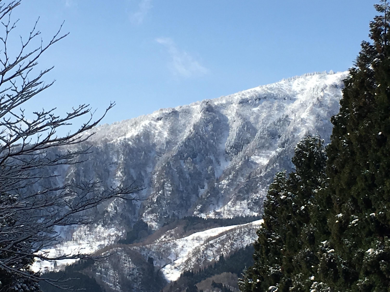 ハチ高原 スキー場