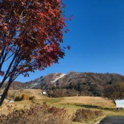 氷ノ山・鉢伏山 初冠雪