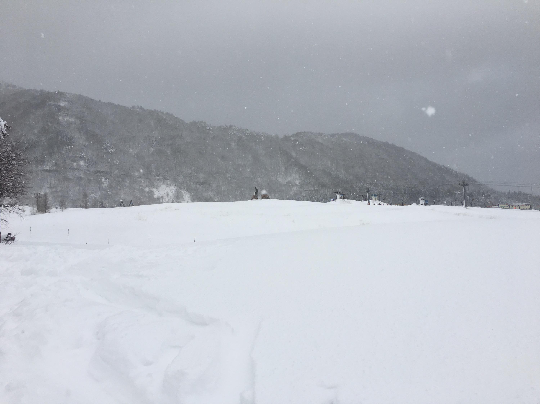 ハチ高原 積雪 1月