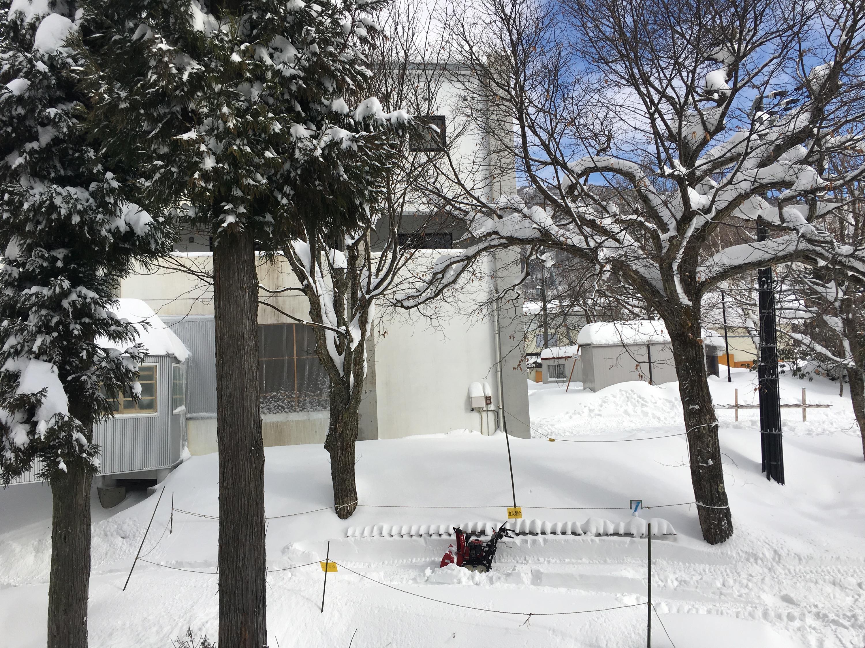 ハチ高原 天気 積雪
