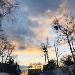 ハチ高原 現在の積雪と天気