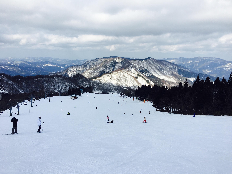 ハチ高原 積雪 スキー場 スキースノボの日