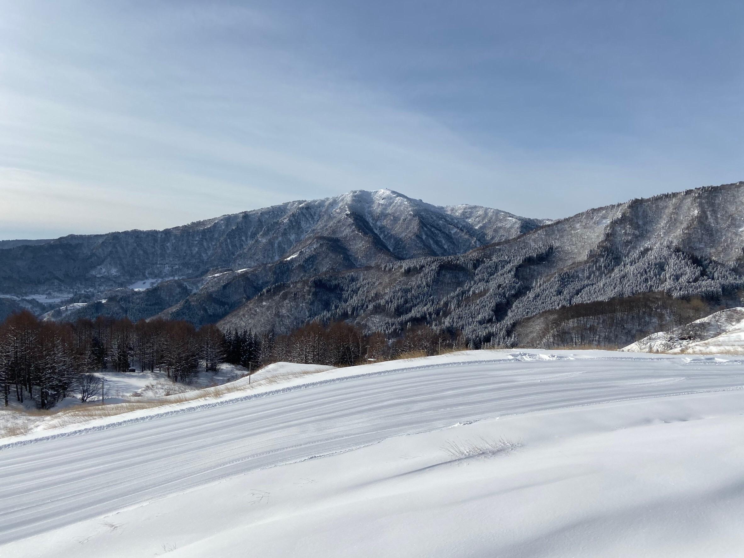 ハチ高原 積雪 2月