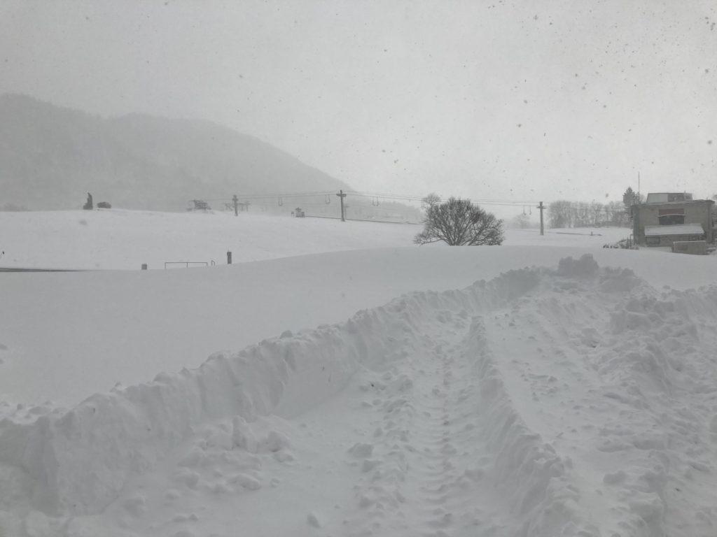 ハチ高原 積雪 2020