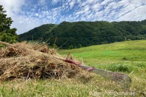 ハチ高原 夏が目前!やまなみの草刈りの様子