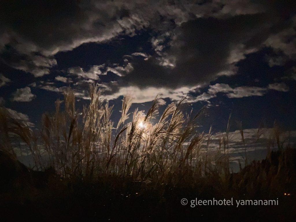 兵庫 養父市 ハチ高原 ピザ ピッツァ 秋 登山 キャンプ ハイキング 中秋の名月 ススキ
