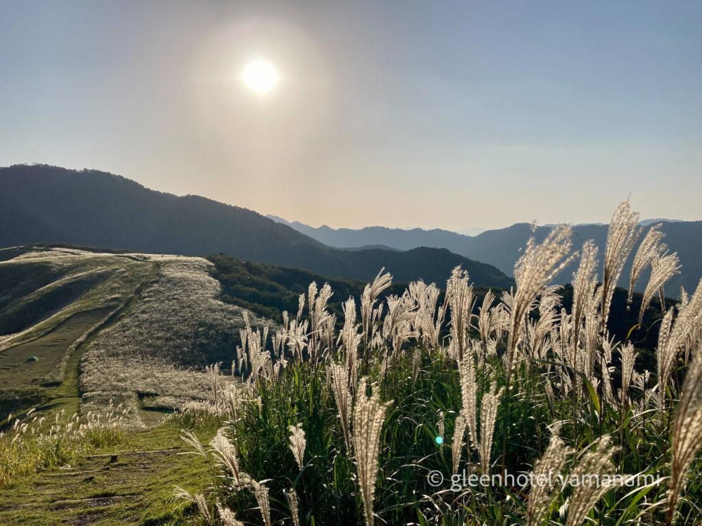 兵庫県 養父市 ハチ高原 スキー場 秋 登山 ハイキング キャンプ グリーンホテルやまなみ ススキ